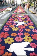 Festa de Corpus Christi em Flores da Cunha-RS